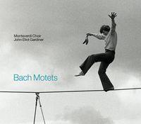Bach motets Gardiner