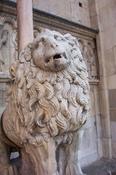 Modne_lion_2